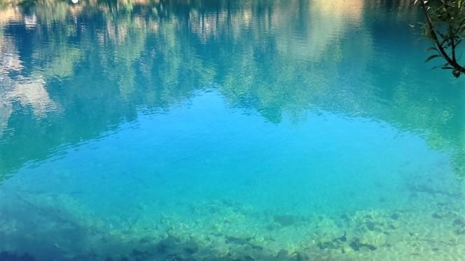 reflected-below