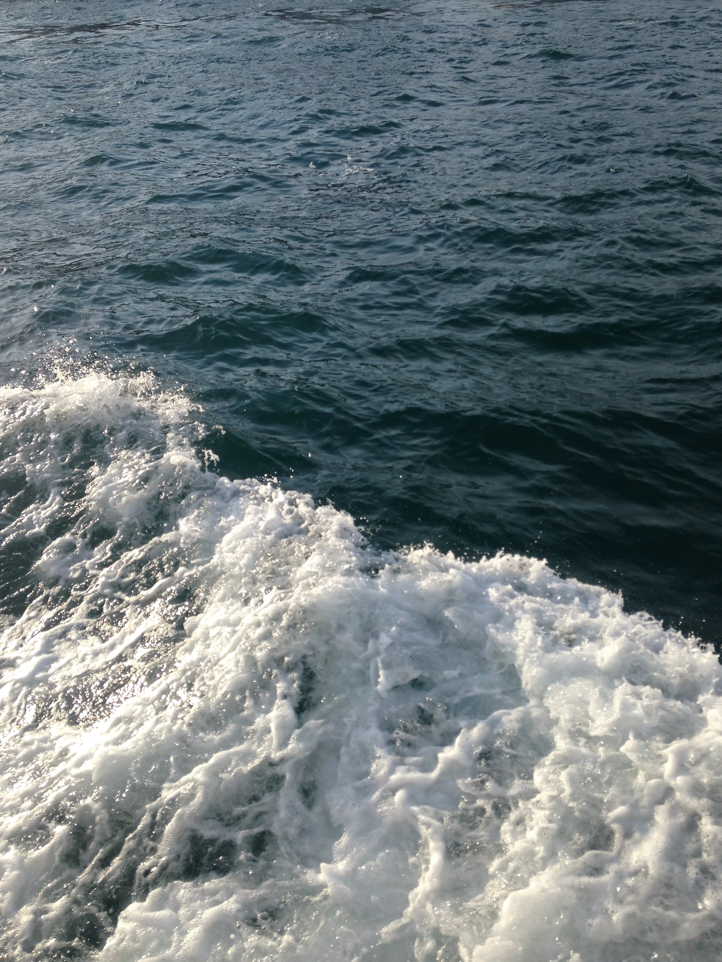 waves-1