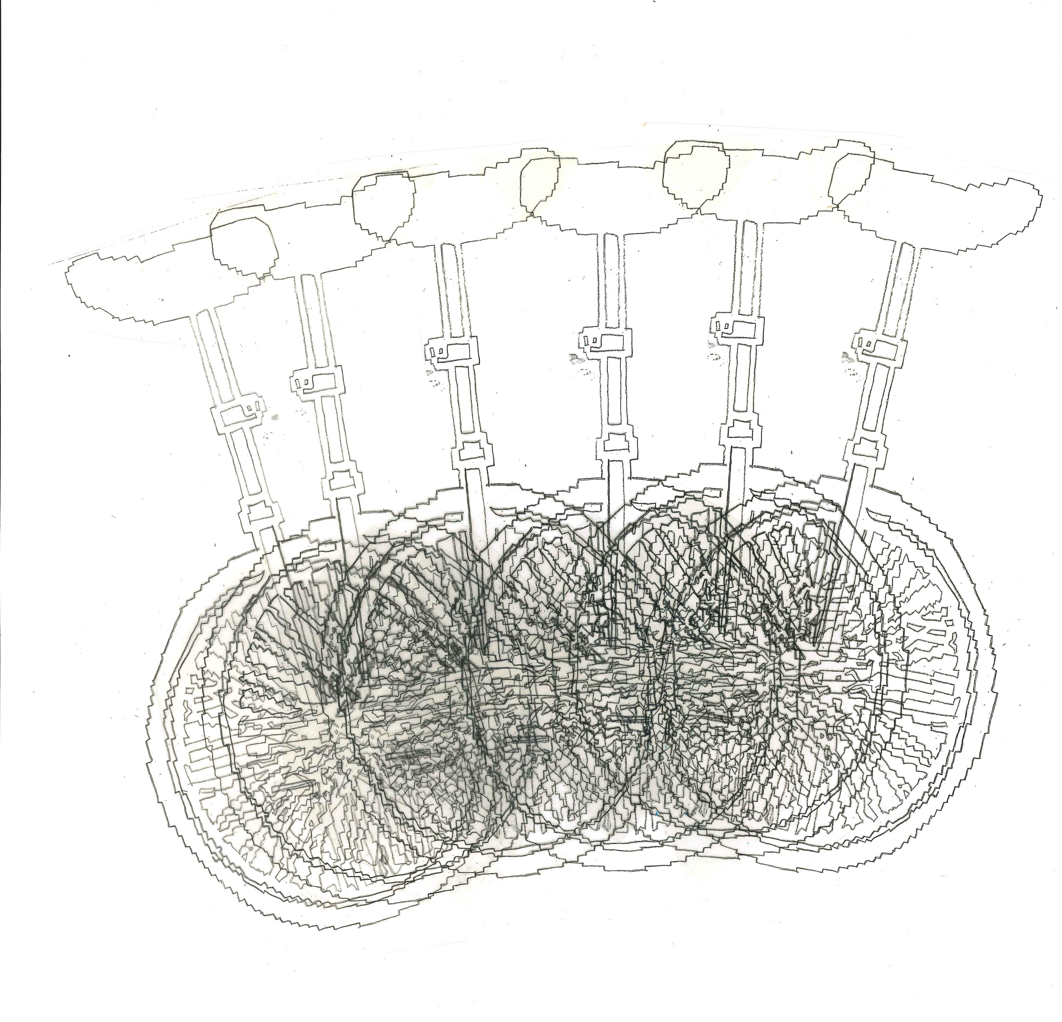 Jasmine Daley Unicycle